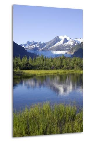 View of Mendenhall Glacier with Pond and Green Grass in Foreground Juneau Southeast Alaska Summer-Design Pics Inc-Metal Print