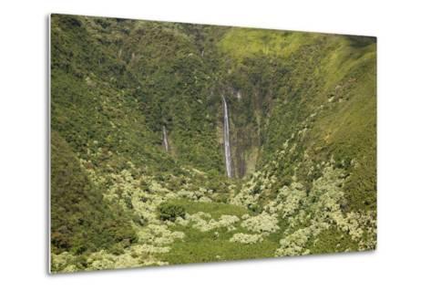 Hawaii, Maui, Waimoku Falls and Lush Greenery-Design Pics Inc-Metal Print
