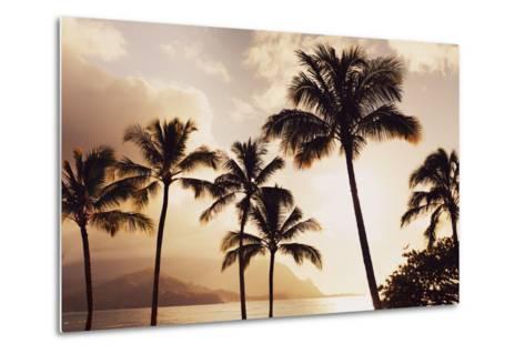 Hawaii, Kauai, Hanalei Bay, Palm Trees at Sunset-Design Pics Inc-Metal Print