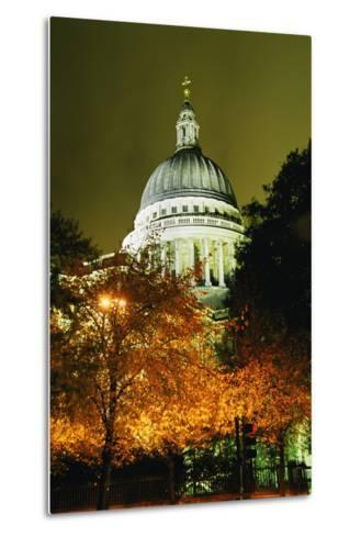 St Paul's Cathedral at Night with Trees-Design Pics Inc-Metal Print