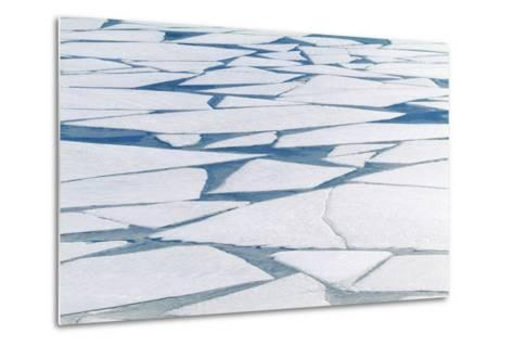 Winter Ice Layer on Portage Lake Breaking Up with Spring Thaw Southcentral Alaska Portage Valley-Design Pics Inc-Metal Print