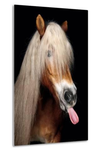 Horse-Fabio Petroni-Metal Print