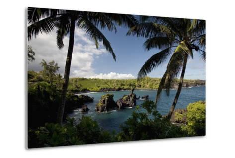 Hawaii, Maui, a Sunny View of Waianapanapa from Behind Palm Trees-Design Pics Inc-Metal Print