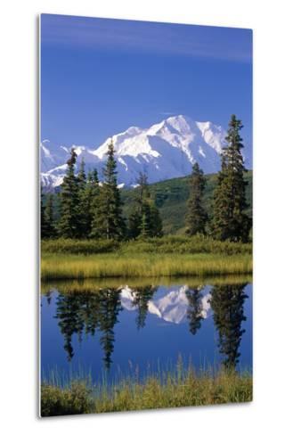 Mt Mckinley Reflecting in Nugget Pond Denali National Park Interior Alaska Summer-Design Pics Inc-Metal Print