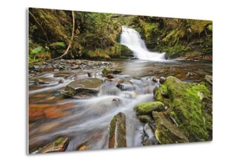 Small Cascade on Institute Creek, Wrangell Island Alaska-Design Pics Inc-Metal Print