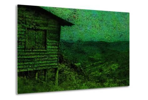 Green-Andr? Burian-Metal Print