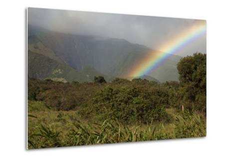 Hawaii, Maui, a Rainbow over the Lush Kaupo Gap-Design Pics Inc-Metal Print