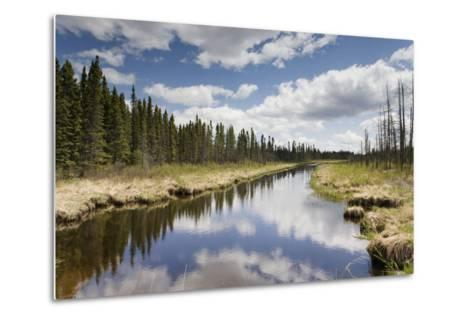 Clouds Reflected in a Tranquil River Lined with Trees; Thunder Bay, Ontario, Canada-Design Pics Inc-Metal Print
