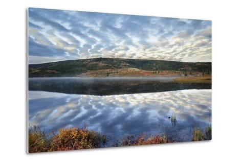 A Pattern of Clouds are Reflected in Wonder Lake in Denali National Park, Alaska-Design Pics Inc-Metal Print