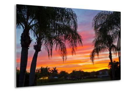 Silhouetted Palm Trees and a Colorful Sky over Coastal Homes at Sunset-Mike Theiss-Metal Print