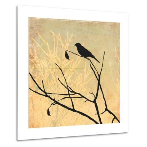 Perched-Andrew Michaels-Metal Print