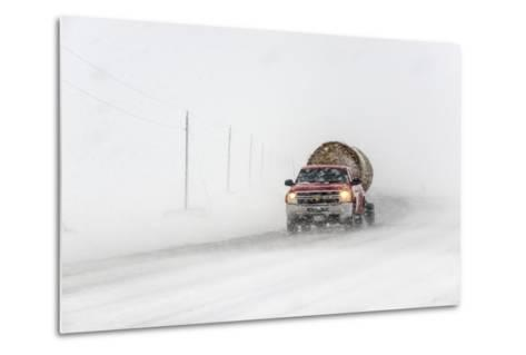 A Pickup Truck Pulling Hay Bales Drives Through Blizzard Conditions-Jim Reed-Metal Print