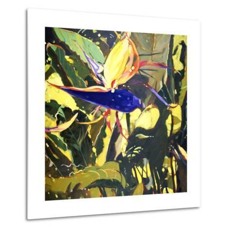 Bird of Paradise-Darrell Hill-Metal Print