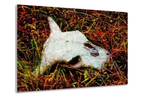 Cow Skull-Andr? Burian-Metal Print