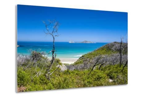 View over Wilsons Promontory National Park, Victoria, Australia, Pacific-Michael Runkel-Metal Print