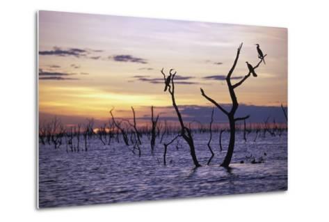 View of Lake Kariba at Sunset-Design Pics Inc-Metal Print