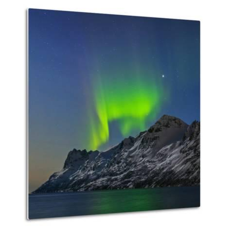 View of the Aurora Borealis, Northern Lights, Reflected in a Fjord-Babak Tafreshi-Metal Print