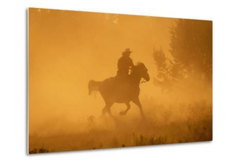 Cowgirl Riding in the Dust-DLILLC-Metal Print
