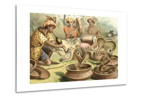 Snake Charmers and Cobras--Metal Print