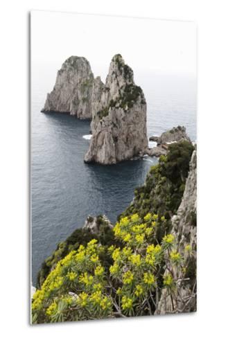 The Rugged Faraglioni Rocks in Capri, Campania, Italy, Mediterranean, Europe-Martin Child-Metal Print
