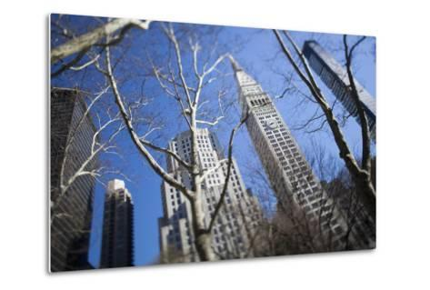 Looking Up Through Trees at Skyscrapers in New York. USA-Design Pics Inc-Metal Print