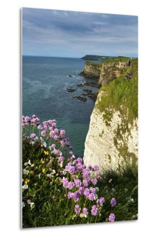 Sea Pinks at Dunluce Castle on the North Coast of Northern Ireland-Chris Hill-Metal Print