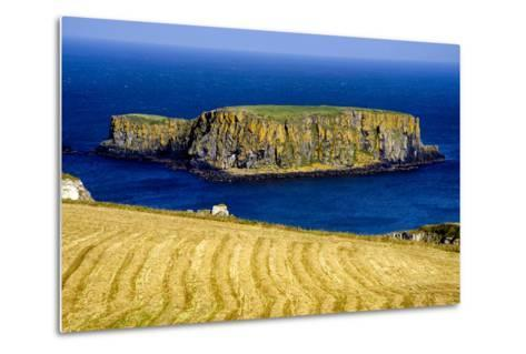 Sheep Island Near Carrick a Rede on the North Coast of Northern Ireland-Chris Hill-Metal Print