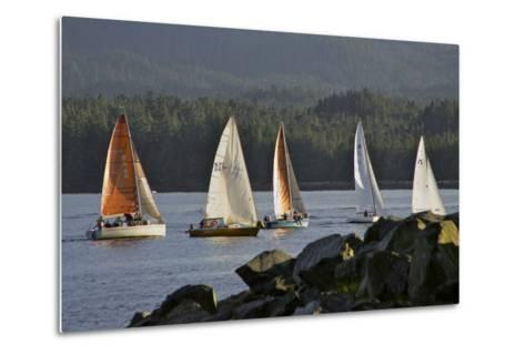 Sailboats Race in Competition Near Ketchikan, Alaska During Summer-Design Pics Inc-Metal Print
