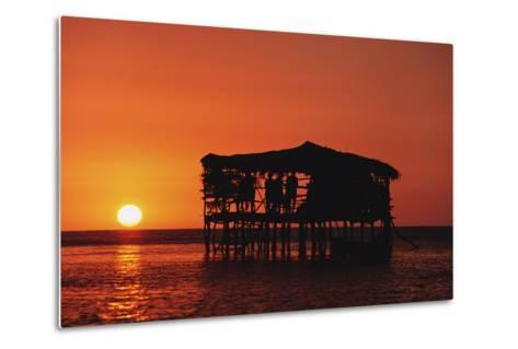 Pelican Bar at Sunset-Design Pics Inc-Metal Print