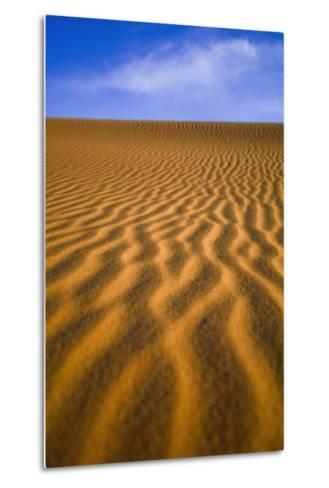 Desert-Design Pics Inc-Metal Print