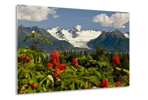 Summer Scenic of Grewingk Glacier and the Kenai Mountains of Kachemak Bay State Park-Design Pics Inc-Metal Print