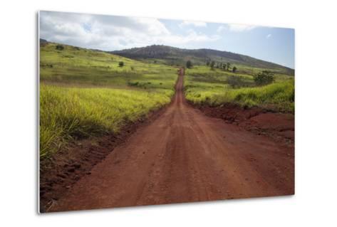Hawaii, Lanai, the Long Red Dirt Road of Munrow Trail-Design Pics Inc-Metal Print