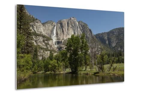 Yosemite Falls in Spring-Richard T Nowitz-Metal Print