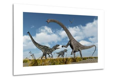 A Pair of Allosaurus Dinosaurs Confront a Giant Diplodocus--Metal Print