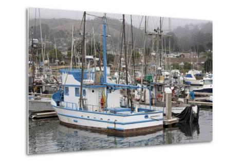Marina in Pillar Point Harbor, Half Moon Bay, California, United States of America, North America-Richard Cummins-Metal Print
