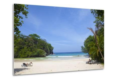 Frenchman's Cove, Portland Parish, Jamaica, West Indies, Caribbean, Central America-Doug Pearson-Metal Print