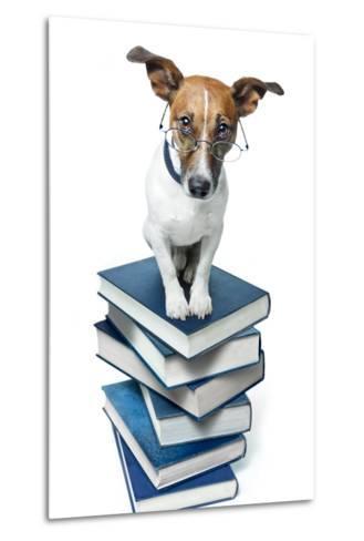 Dog Book Stack-Javier Brosch-Metal Print