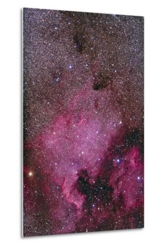 Ngc 7000 and the Pelican Nebula--Metal Print