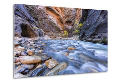 The Narrows of the Virgin River in autumn in Zion NP, Utah, USA-Chuck Haney-Metal Print