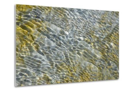 An Abstract Pattern of Ripples on Water's Surface-Tom Murphy-Metal Print