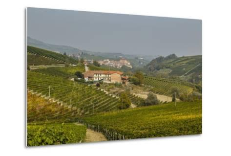 View over Barolo Village and Vineyards, Langhe, Cuneo District, Piedmont, Italy, Europe-Yadid Levy-Metal Print
