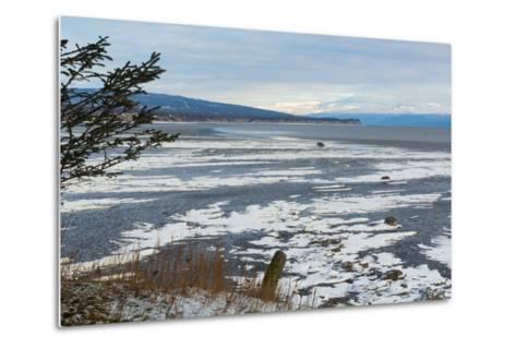 Lonely Tree Overlooking Frozen Tidal Flats-Latitude 59 LLP-Metal Print