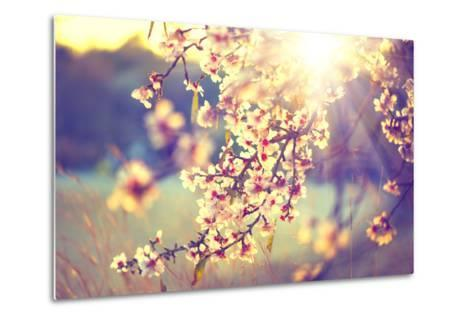 Spring Blossom Background. Beautiful Nature Scene with Blooming Tree and Sun Flare. Sunny Day. Spri-Subbotina Anna-Metal Print