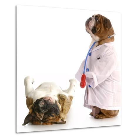 Veterinary Care-Willee Cole-Metal Print