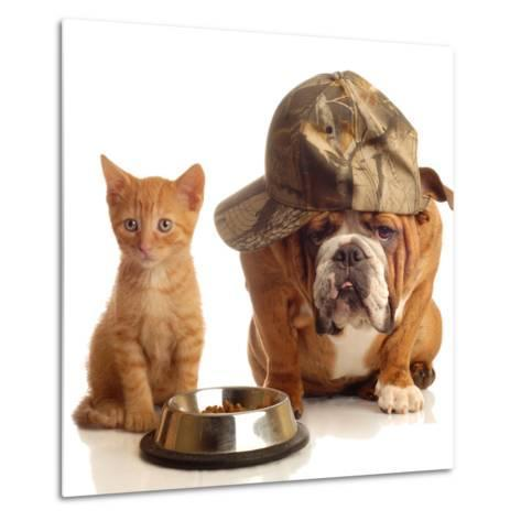 Bulldog and Cat at Food Dish Together-Willee Cole-Metal Print