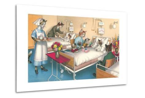 Cats in the Hospital--Metal Print