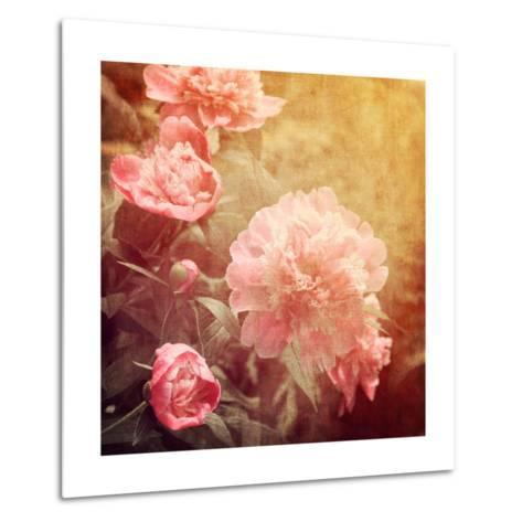 Art Floral Vintage Background with Pink Peonies-Irina QQQ-Metal Print