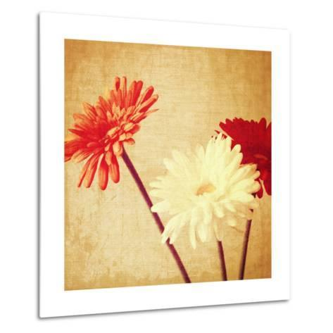 Art Floral Vintage Background with Red and White Gerbera in Sepia-Irina QQQ-Metal Print