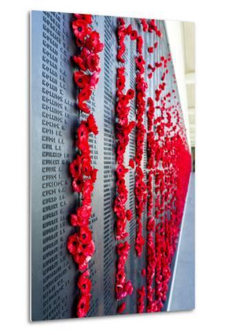 The Roll of Honour and the Names of Fallen Soldiers are Remembered with Bright Red Poppies-Jason Edwards-Metal Print
