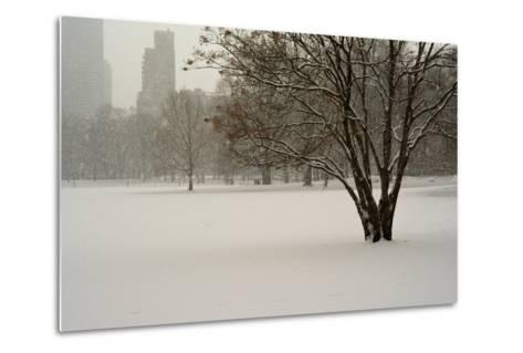The Sheep Meadow in Central Park During a Blizzard-Kike Calvo-Metal Print